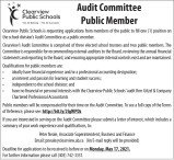 Audit Committee Public Member